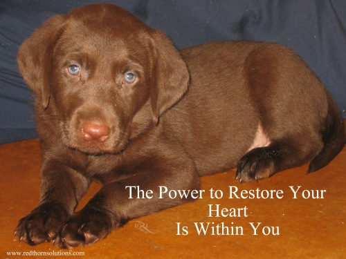 restore heart